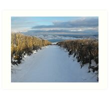 Old lane in snow Art Print