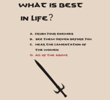 Conan the Barbarian What is best in life? by koalakoala