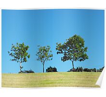 Trees on the skyline at Cultra, County Down Poster