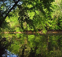 April on Green River by Virginia Shutters