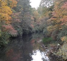 Smudge of fall with a settling creek by salesgirl