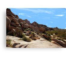 Yuca Valley desesrt  Canvas Print