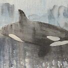 Orca Passing (Spray 2 of 10) by Nicole Tattersall