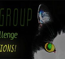 The CatRaven Challenge group winner banner by Baina Masquelier