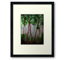 Last rays of light thru the trees, watercolor Framed Print