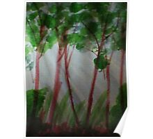 Last rays of light thru the trees, watercolor Poster