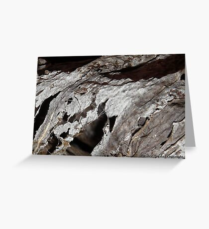 Silver decay Greeting Card