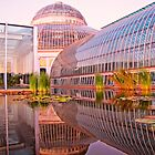 Como Reflections at Sunset by shutterbug2010