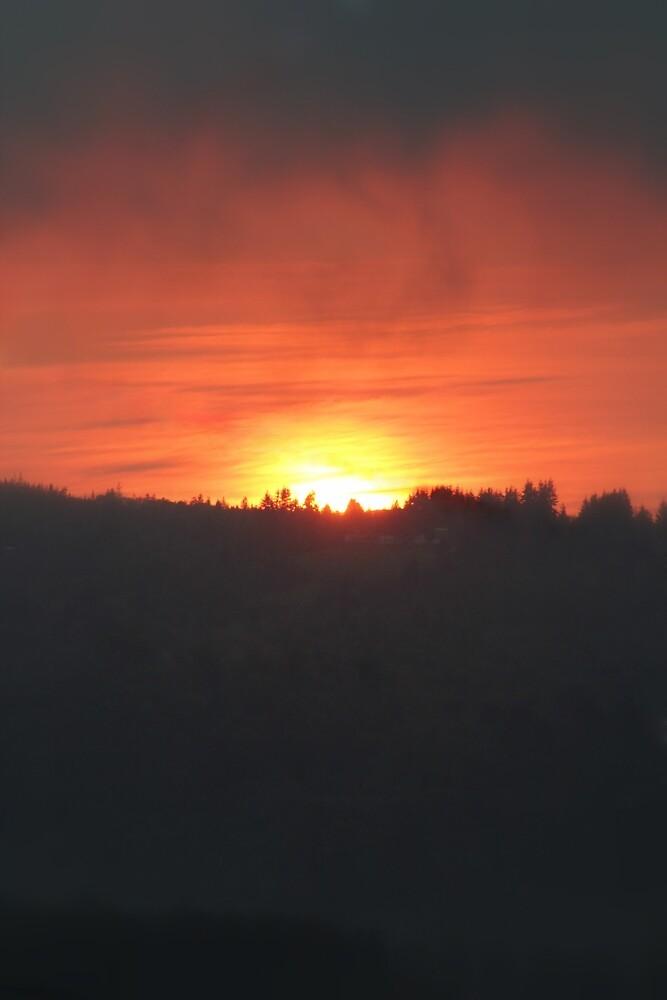 golden columbia river sunrise by Dawna Morton