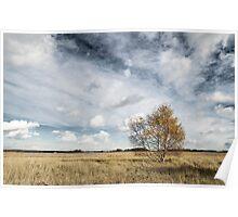 Snape Maltings landscape  Poster