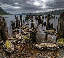 Loch Ness, the Search for Nessie by Michael Treloar