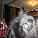 Black Dog by BlackDogAura