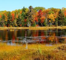 Fall Marsh Sticker