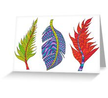 Colours / Colors of Seasons Greeting Card