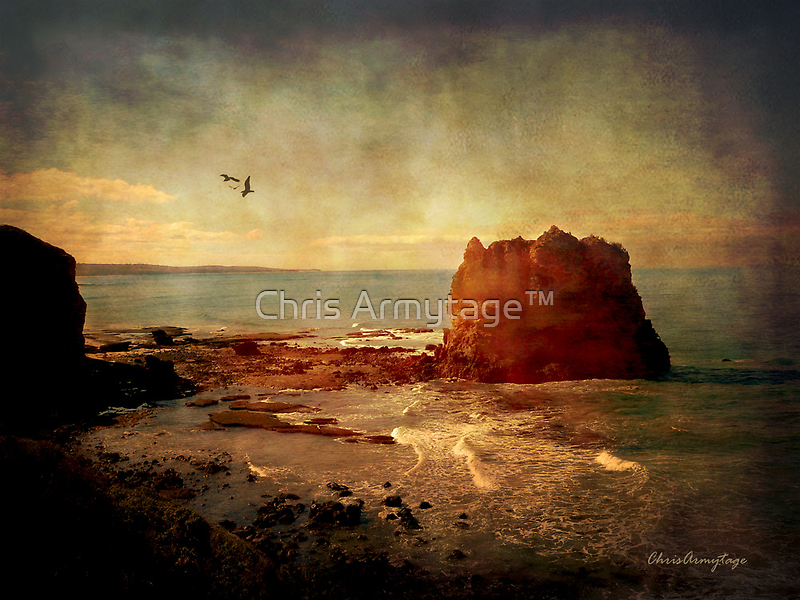 The sound .... by Chris Armytage™