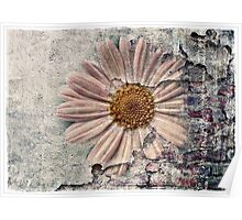 Another Decayed Flower! Poster