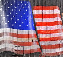 My Freedom Say's Thank you by Donnie Voelker