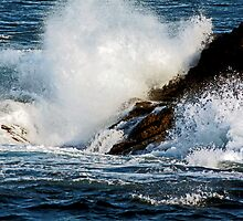 Waves Crashing - Seal Point Phillip Island by Deb Gibbons
