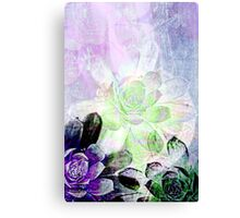Succulent Layers Canvas Print