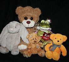 Cuddly Toys by aussiebushstick