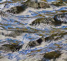Little Waves by Lynn Wiles