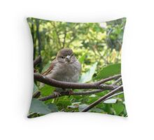 'Baby robin' Throw Pillow