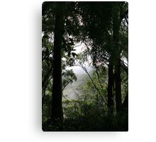Foggy Morning in the Valley Canvas Print