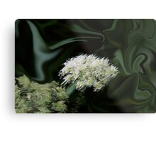 Natural Abstract White Metal Print