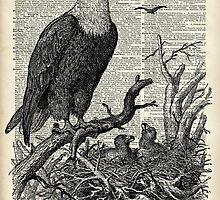 Eagle and its nest over encyclopedia page by DictionaryArt