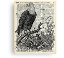 Eagle and its nest over encyclopedia page Metal Print
