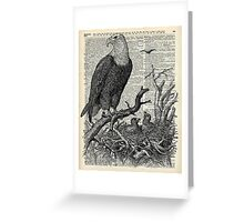 Eagle and its nest over encyclopedia page Greeting Card