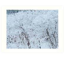 Snowy Weight Art Print