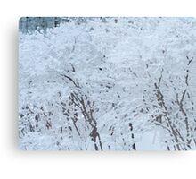 Snowy Weight Metal Print