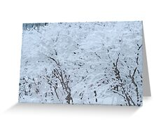Snowy Weight Greeting Card