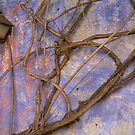 Vine Art by Cathy L. Gregg