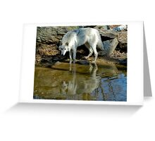 Wade in the Water Greeting Card