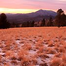 Snow scene on the San Francisco Mountain Peaks. by mikepemberton