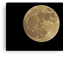 The Moon Canvas Print