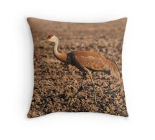 Sandhill Crane in Field Throw Pillow