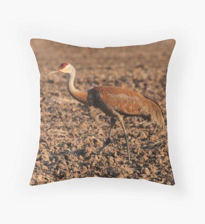 Sandhill Crane in Field Throw Pillow