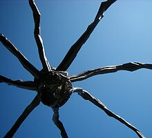 """8 legged freak"" - Art museum Ottawa by Liamspero"