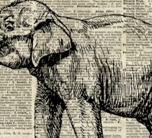 Vintage Illustration Of Happy Elephant over Old Dictionary Book Page  Sticker