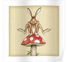 Fungi Jumping Poster