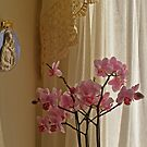 Madonna and the Orchid by Anita Donohoe