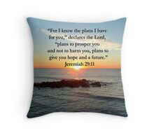 SERENE JEREMIAH 29:11 PHOTO DESIGN Throw Pillow