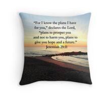 PEACEFUL JEREMIAH 29:11 PHOTO DESIGN Throw Pillow