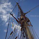 _crónicas del navegante solitario [la mirada edicficada] by Justo Morales