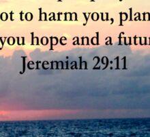 INSPIRING JEREMIAH 29:11 PHOTO DESIGN Sticker