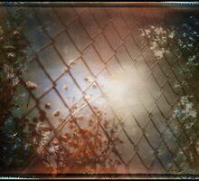 Eden II by Jill Auville