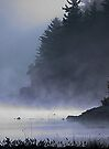 Cabin in the Mist, Kennebec Lake, Ontario by Debbie Pinard